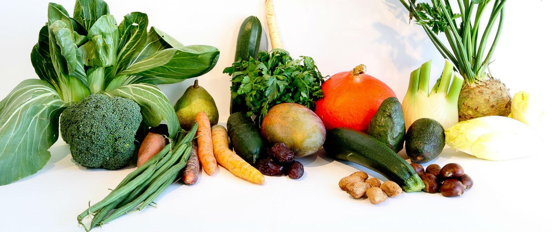 vegetarian essays