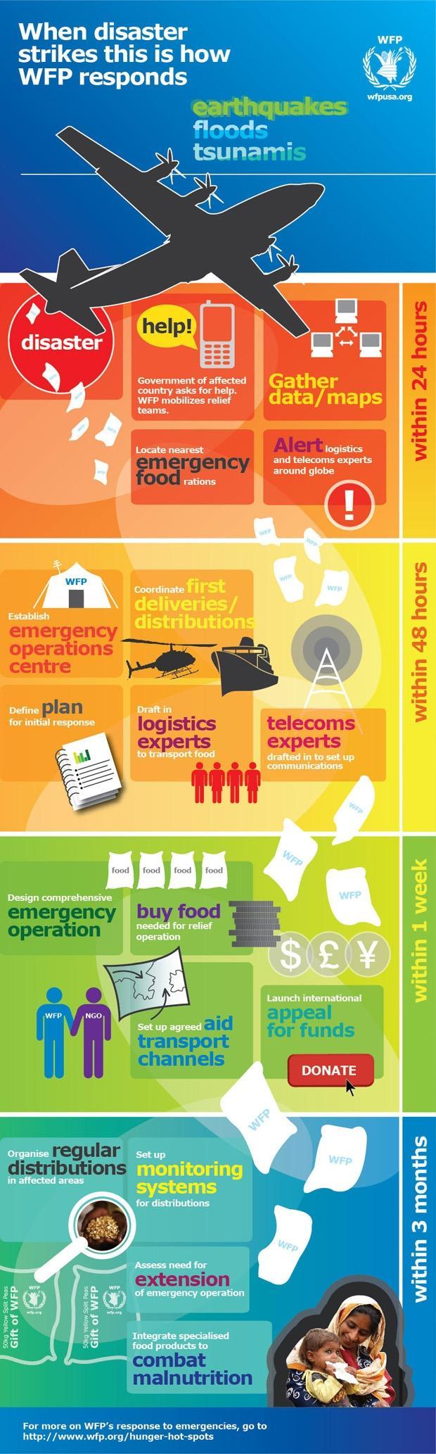emergency management field essay