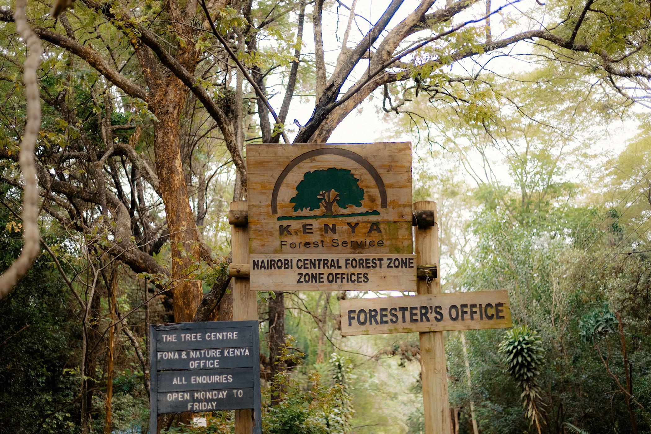 Winnie Cheche photographed at the Nairobi Arboretum.