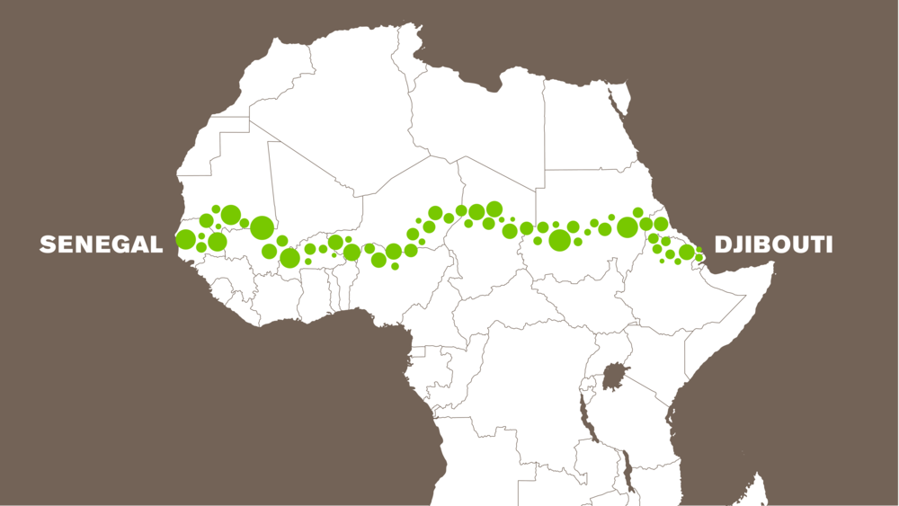 The Great Green Wall Is the Type of Utopian Project That Could Save the Planet