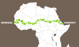 Artikel: The Great Green Wall Is the Type of Utopian Project That Could Save the Planet