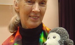 Article: Vote for Jane Goodall in the Global Citizen March Madness Challenge