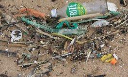 Article: Tiny Pellets, Big Problem: Plastic Pollutes 73% of British Beaches