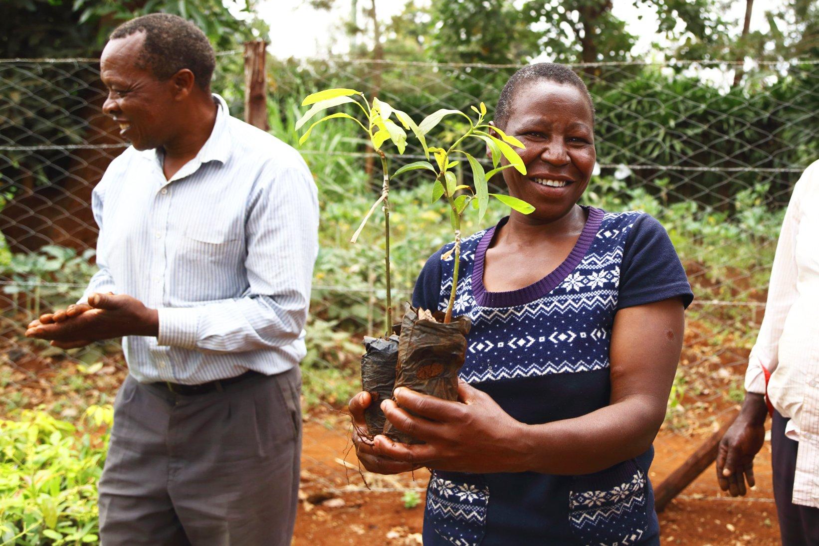 Kenya - a woman receiving two saplings from a Treedom tree nursery.jpg