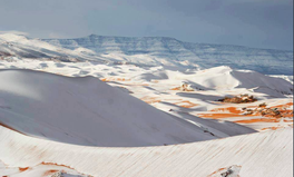Artikel: It Snowed in the Sahara — And the Photos Are Insane