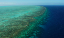 Article: The Great Barrier Reef Just Suffered a Massive Blow