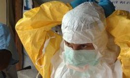 Article: Ebola virus: everything you need to know