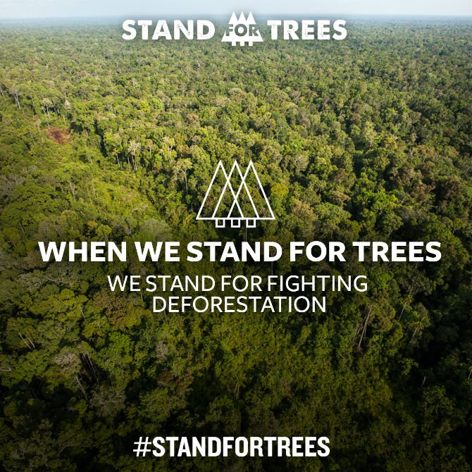 stand up for trees stand up for deforestation.jpg