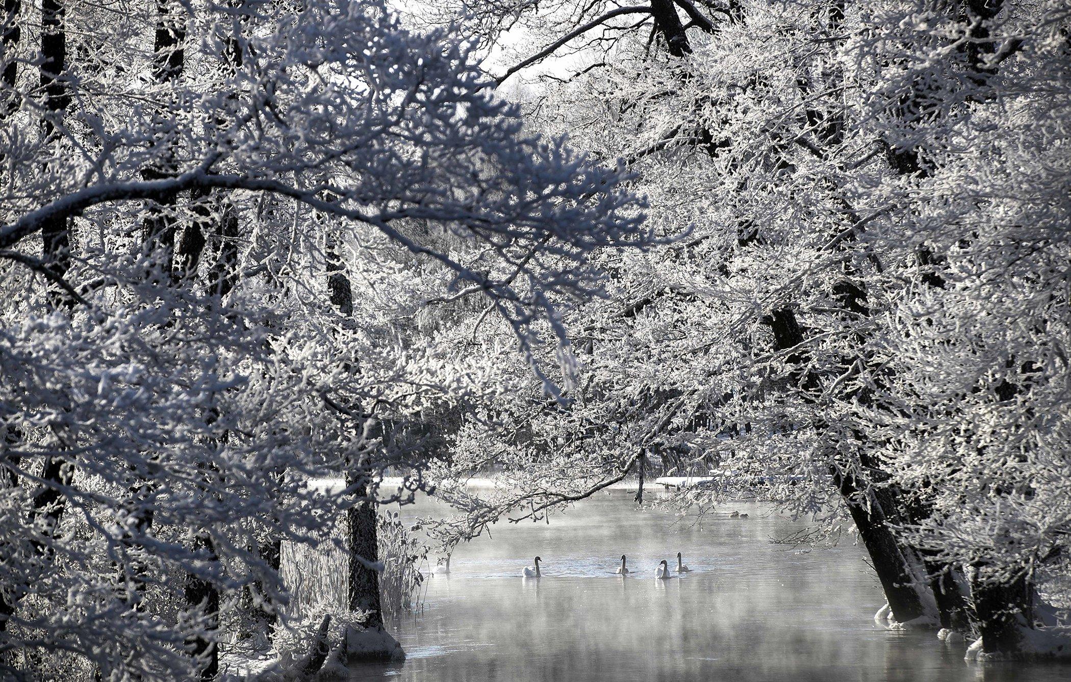 Winter-Wather-Lithuania.jpg