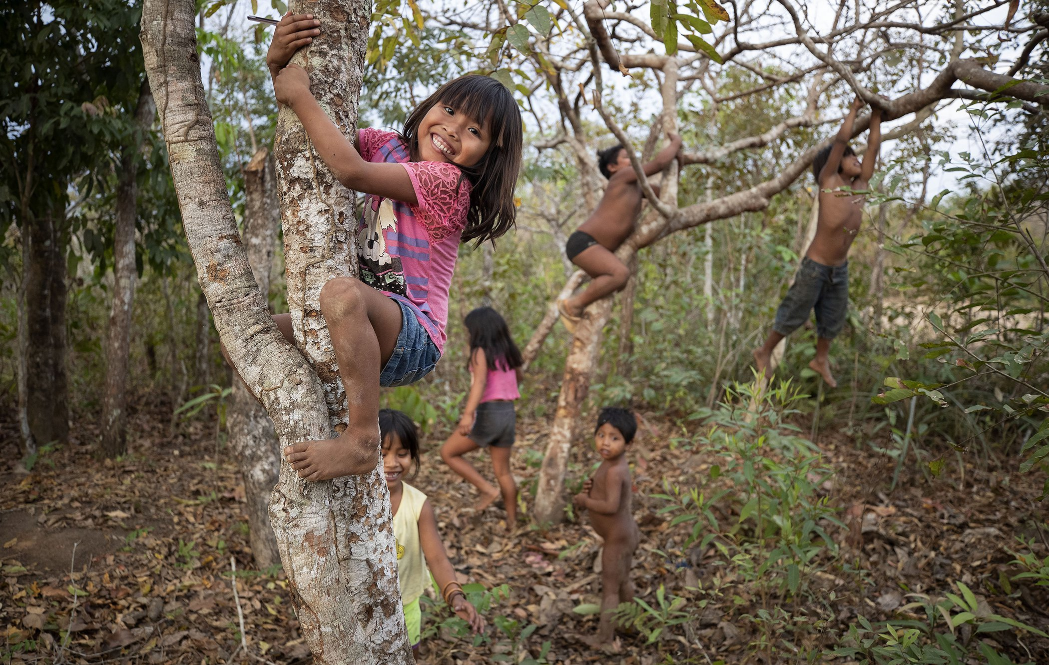 Brazil-Indigenous-Community-Amazon.jpg