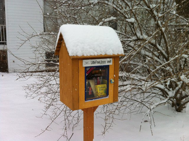 Little Free Library - Snow