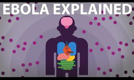 Video: The Ebola virus explained - how your body fights for survival