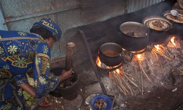 Article: US Saves Lives by Pledging Clean Cooking Stoves for 100 Million