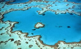 Artículo: United Nations Issues Dire Warning for the Great Barrier Reef