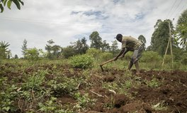 Article: Children Lend Help to Kenyan Farmers Amid Coronavirus Pandemic