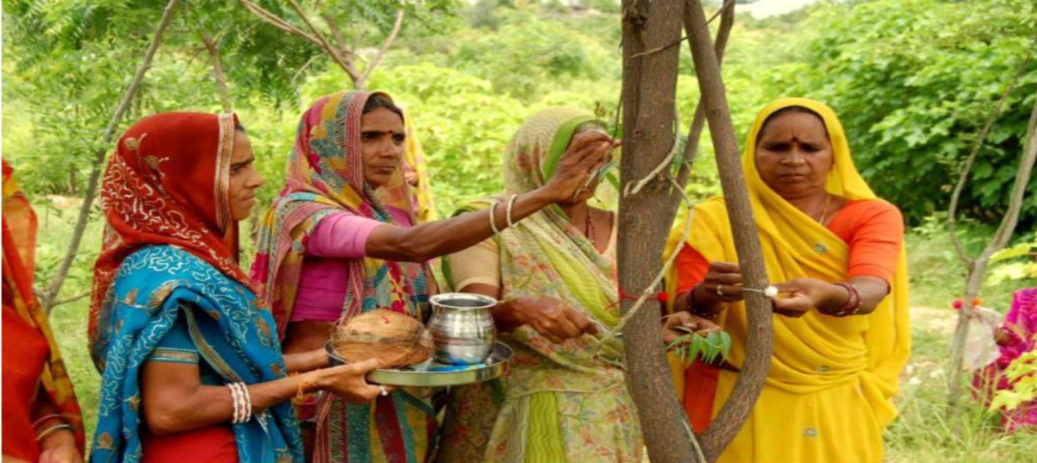 This amazing village in India plants 111 trees every time a girl is born