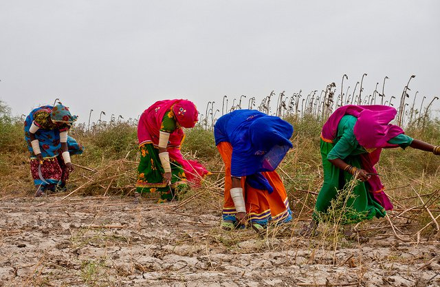 women farming pakistan un hunger
