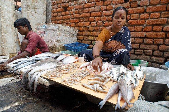India Fish Market UN Asia hunger report