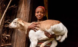 Article: How Goats, Sheep, and Chickens Are Eliminating Child Marriage in Ethiopia