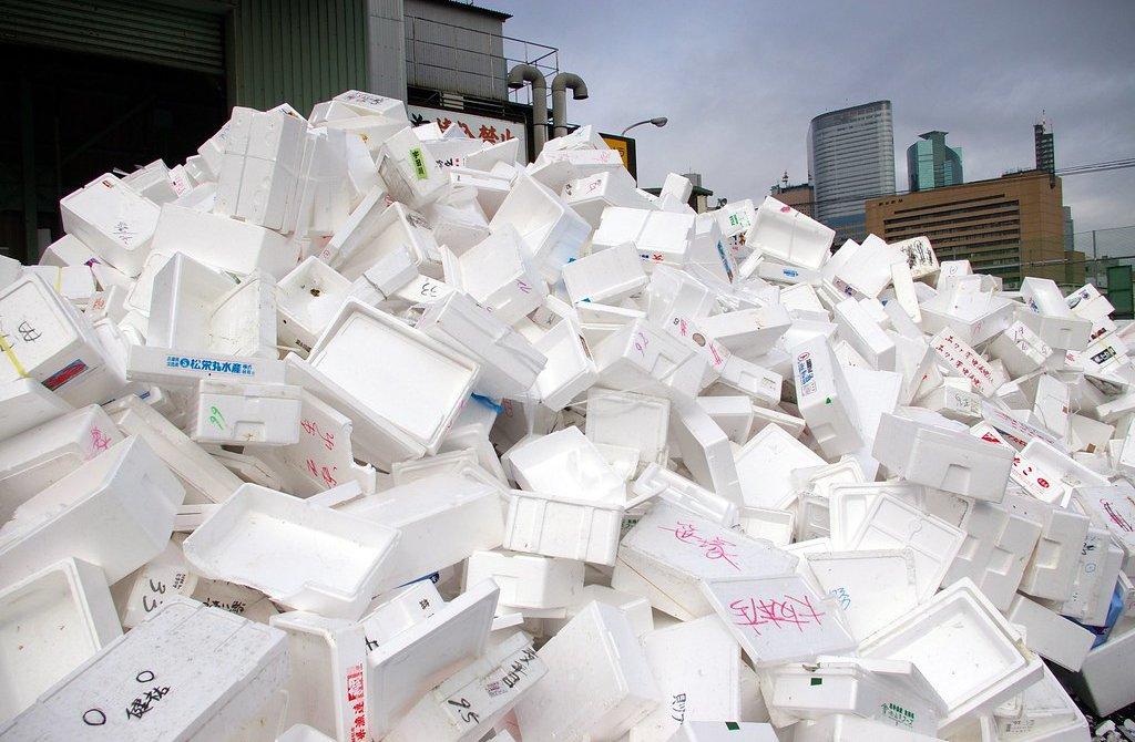 Sieg für die Umwelt: Costa Rica verbietet Styropor