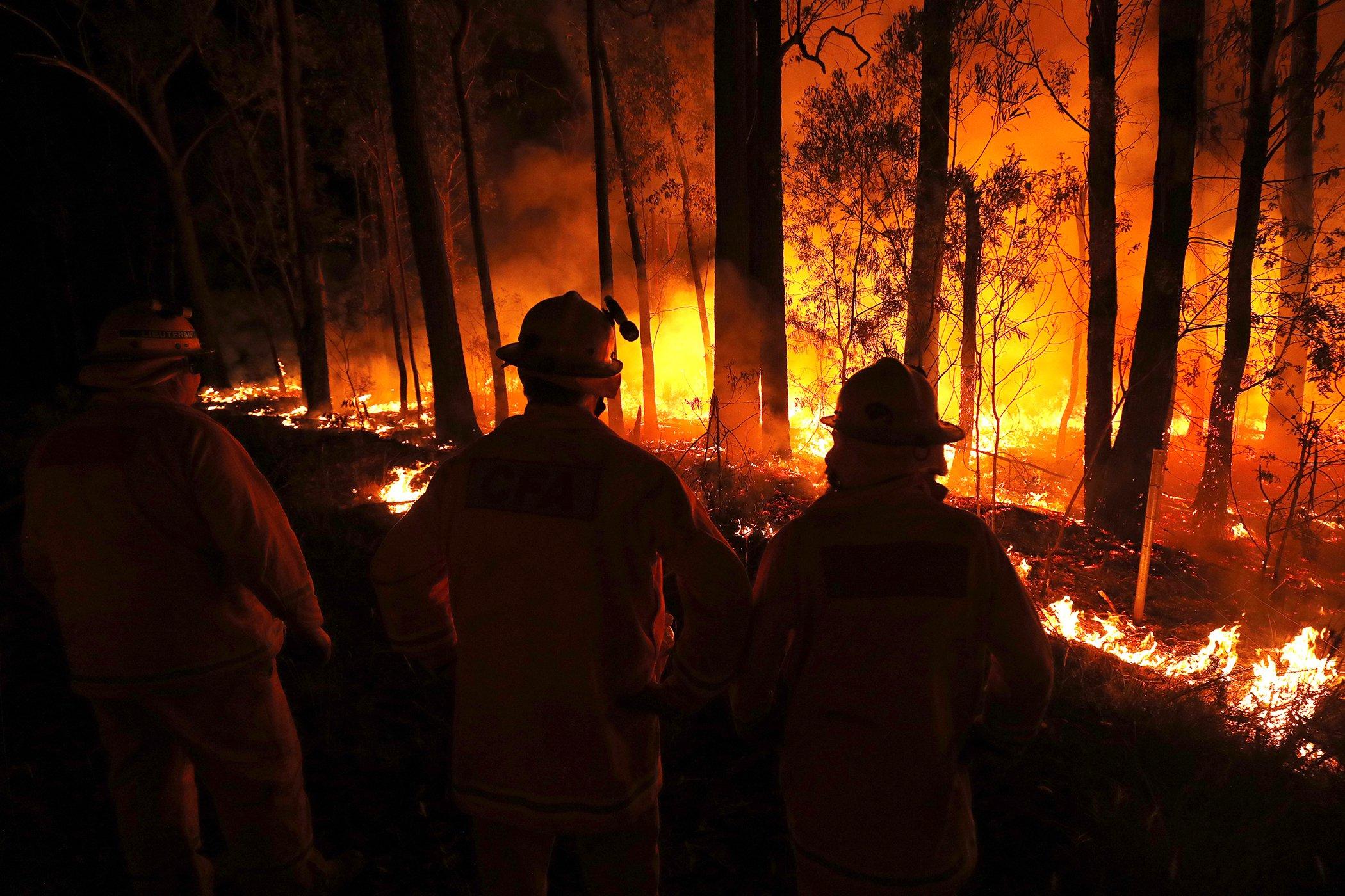 Australia-Wildfires-006.jpg