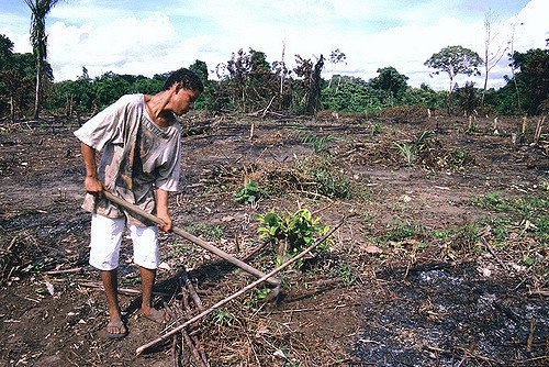 brazilfarmer-juliapantoja-worldbank-flickr.jpg