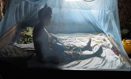 Article: These New Mosquito Nets Could Prevent Millions of Malaria Cases Around the World