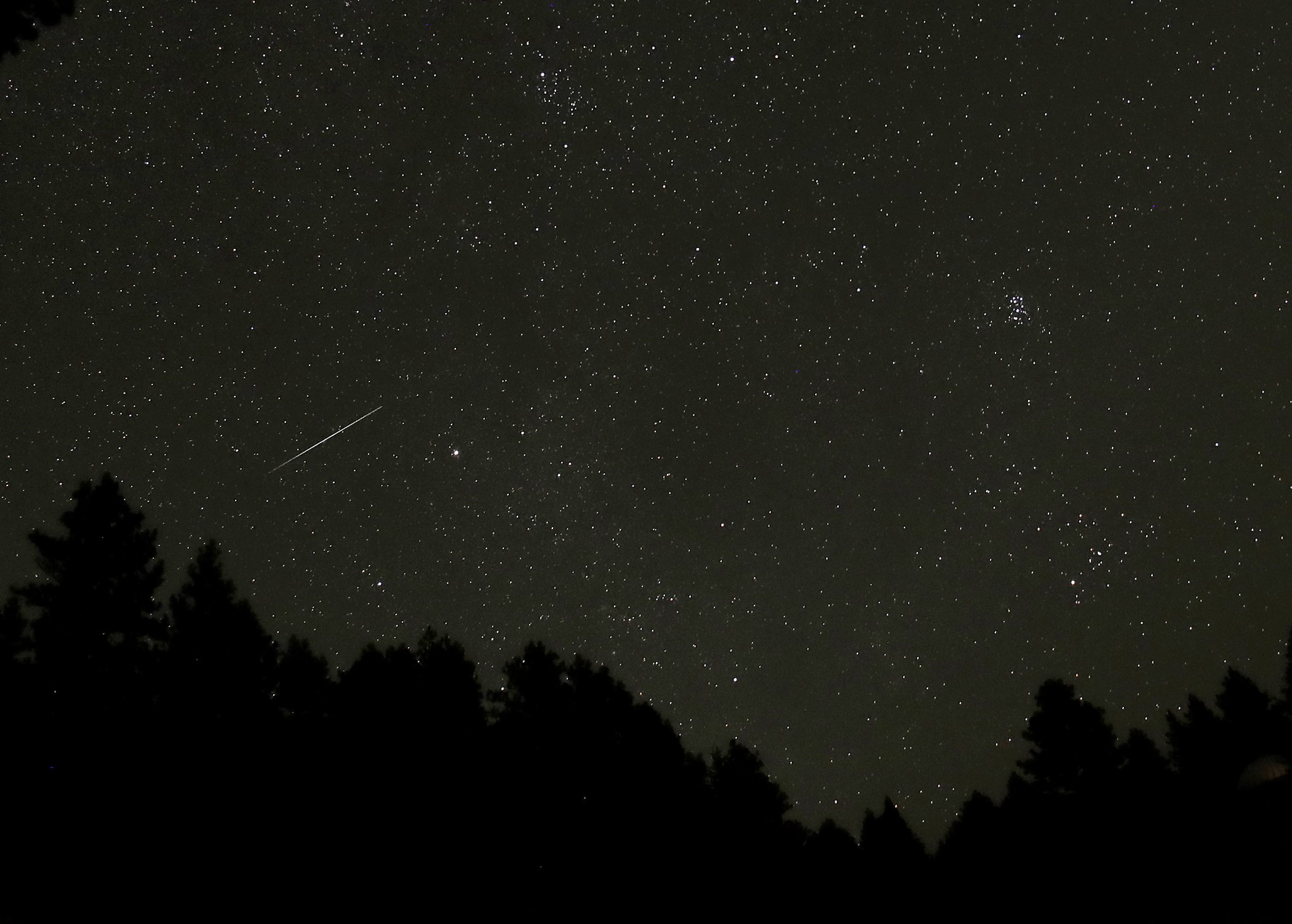 Environmental-Photos-August-Perseid-Meteor-Shower-Idaho.jpg