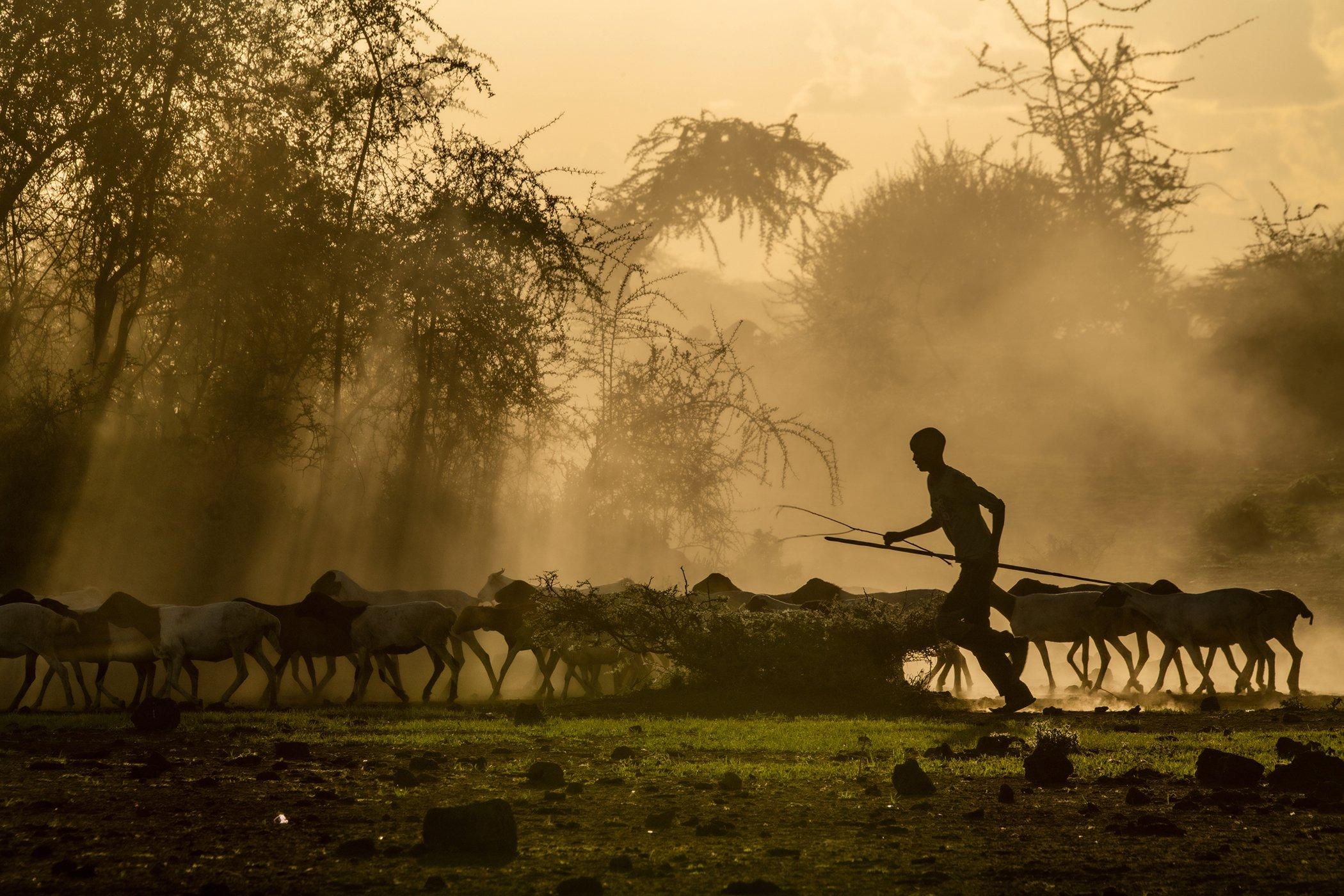 Chyulu Hills-Kenya-Conservation-Covid-19-Impacts-002.jpg