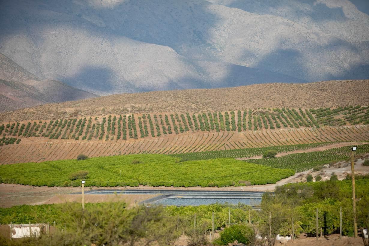 CLnicky-plantation-reservoirs.jpeg