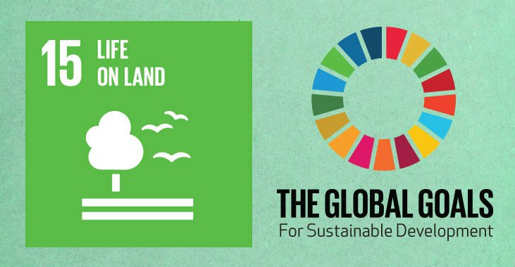 global-goals-15-life-on-land-b15.jpg
