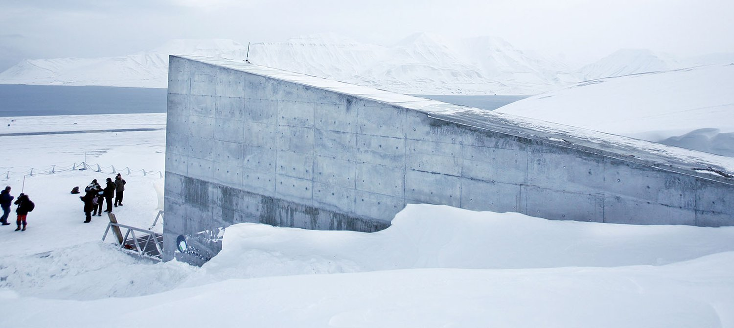 This Seed Bank In The Arctic Holds More Than 1 Million Seeds