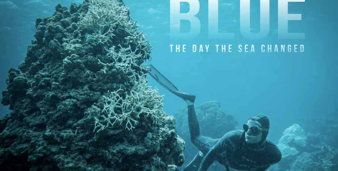 Image result for blue documentary