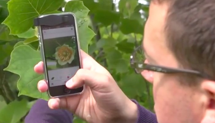 Snap a photo of a plant and this app will tell you all about it