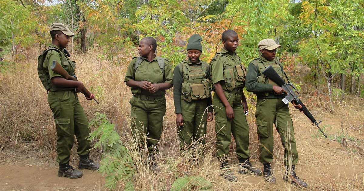How Zimbabwe's All-Women Anti-Poaching Unit Sparked a Movement