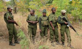 Article: How Zimbabwe's All-Women Anti-Poaching Unit Sparked a Movement