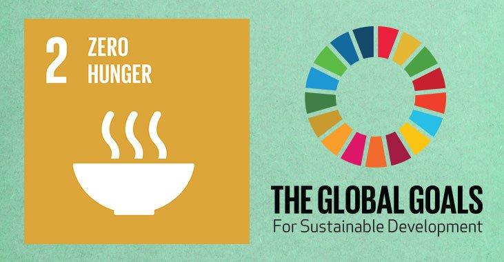 global-goals-2-zero-hunger.jpg