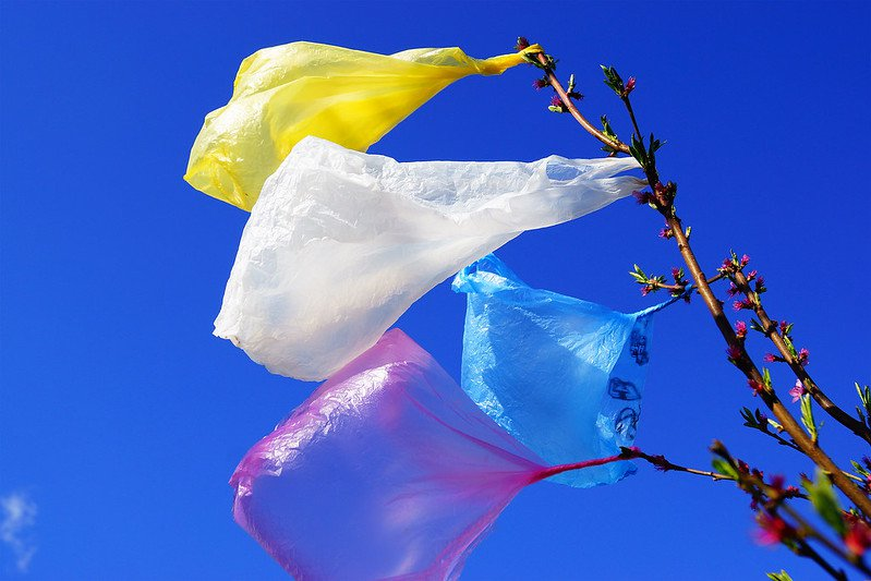 Another Canadian Province Just Banned Single-Use Plastic Bags