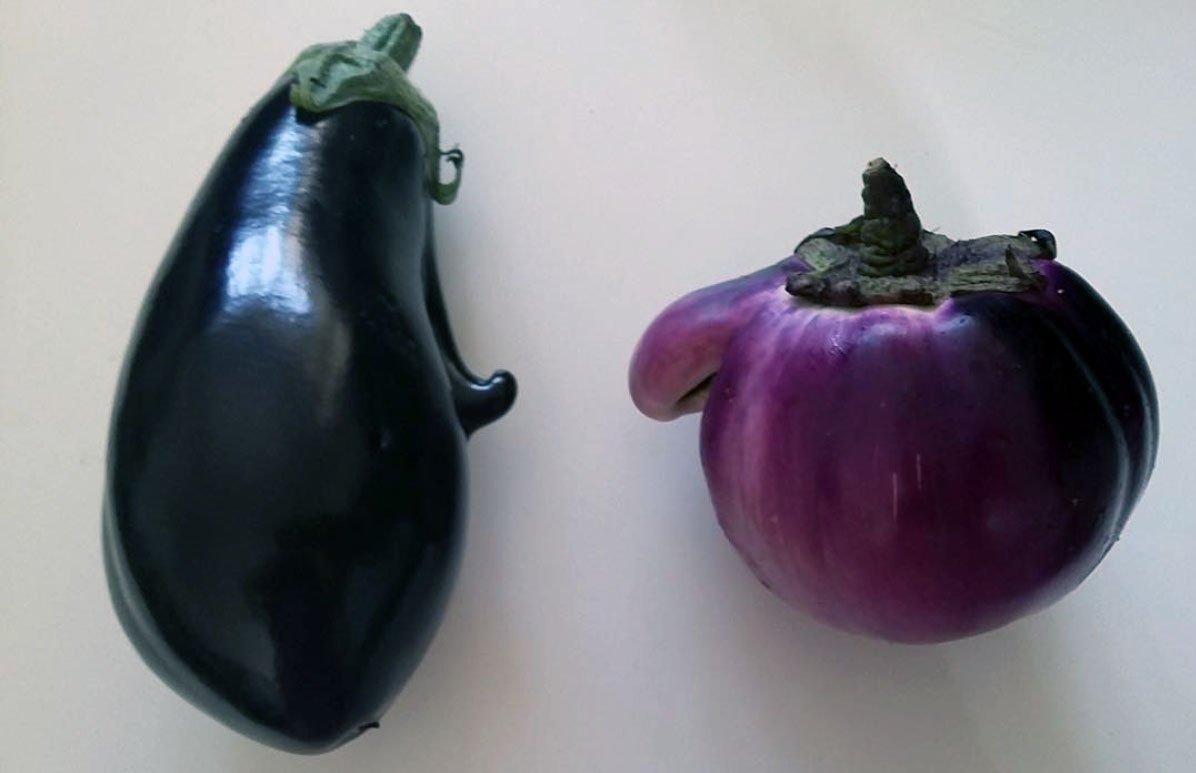 eggplant copy.jpg