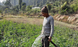 Article: Climate-Smart Farming in Rural Nepal Eases Pressure to Migrate