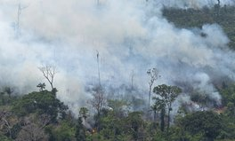 Article: The Amazon Fires Are Making the Air Poisonous for Children