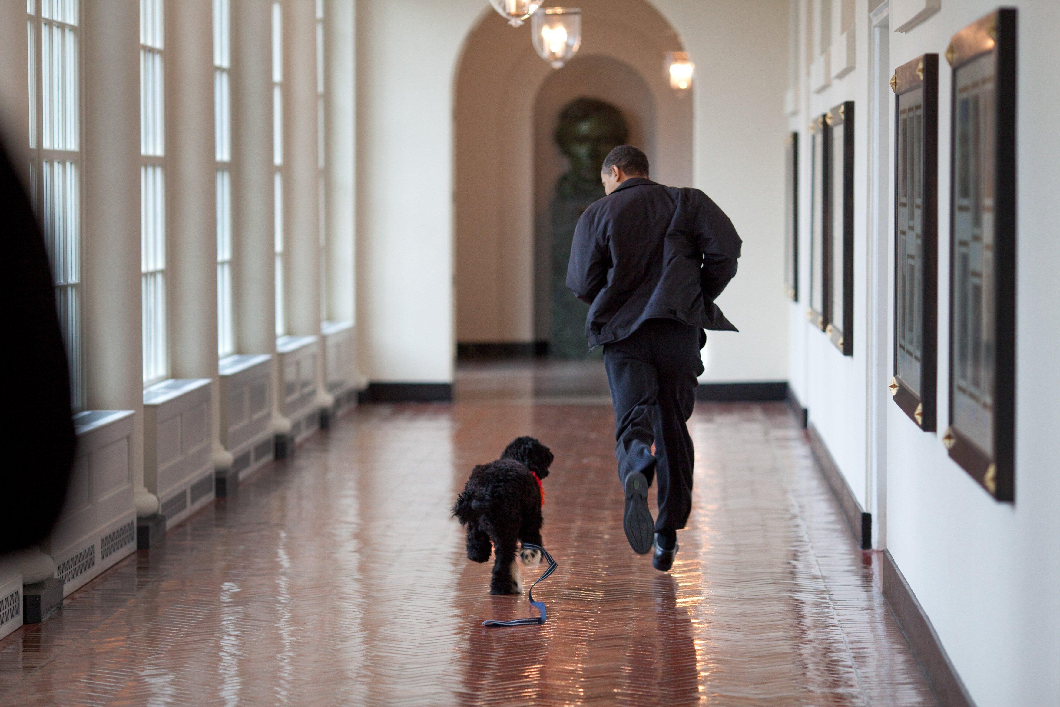 Barack_Obama_Birthday_FINALS_005.jpg