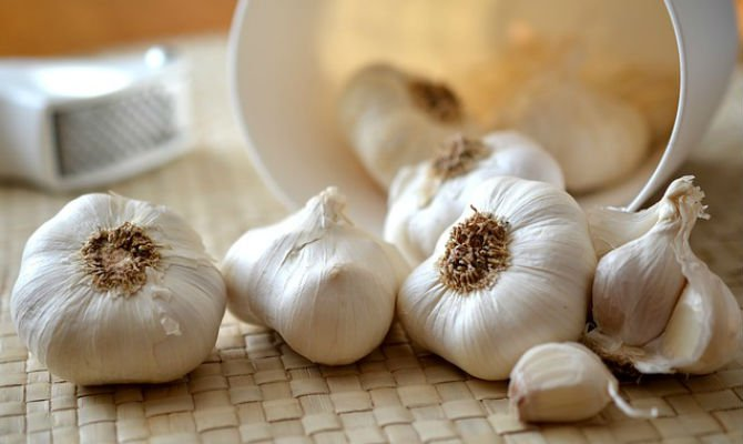 Garlic traditional remedies.jpg