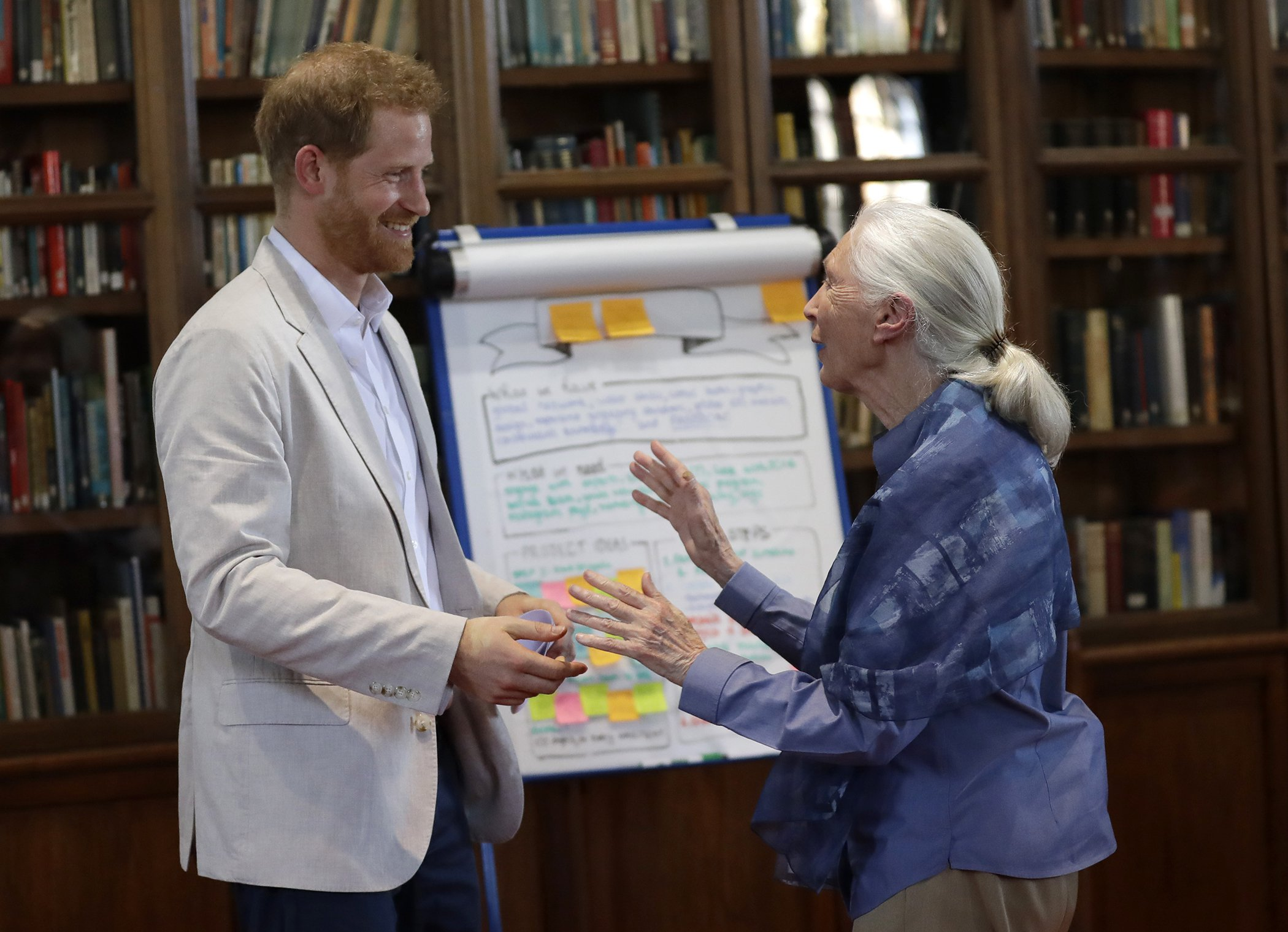 Prince-Harry-Jane-Goodall-Environment.jpg