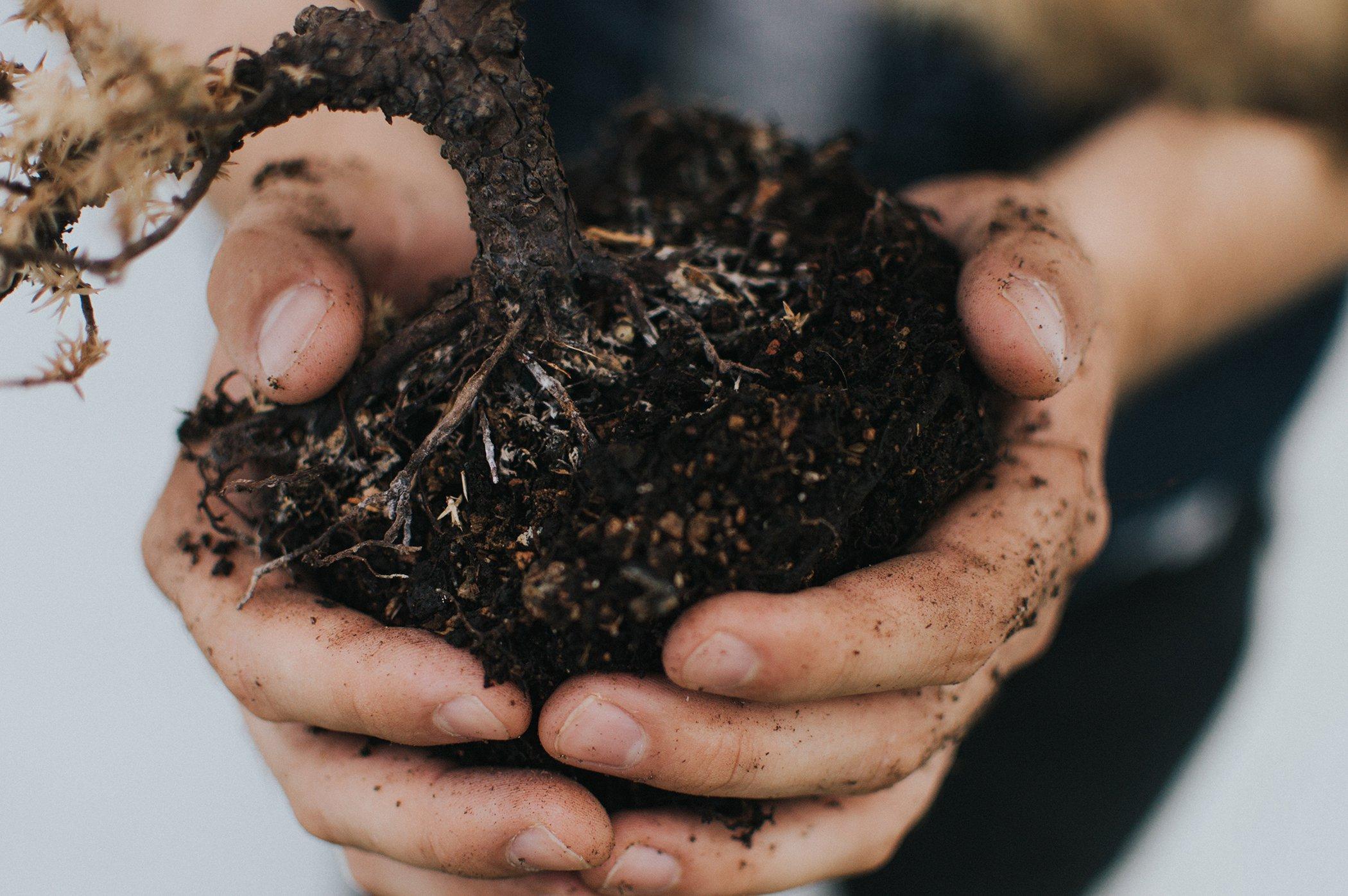 Environmental-Wins-2019-Agriculture.jpg