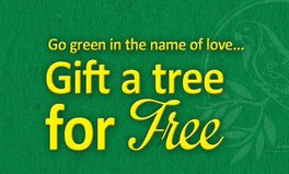 Article: Gift a tree!