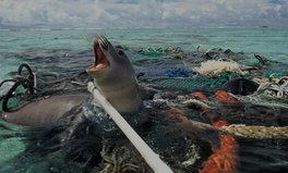 Article: This Pile of Ocean Trash Could Be Recognized as a Country