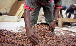 Article: As Cocoa Prices Fall in Ghana, Child Labor Fears Grow