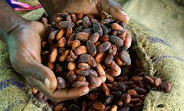 Article: Paying More For Chocolate Could Help Curb Child Labor in Ghana