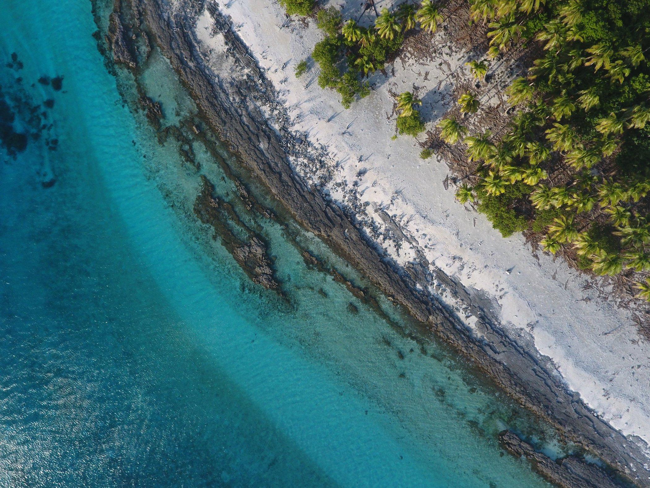 Blue Nature Alliance-Conservation-Oceans-003.jpg